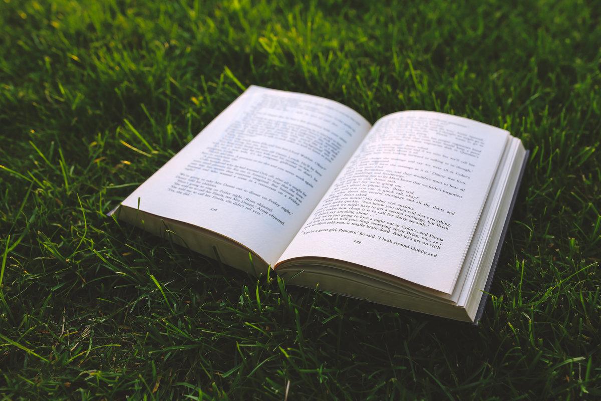 Книжки с картинками без слов