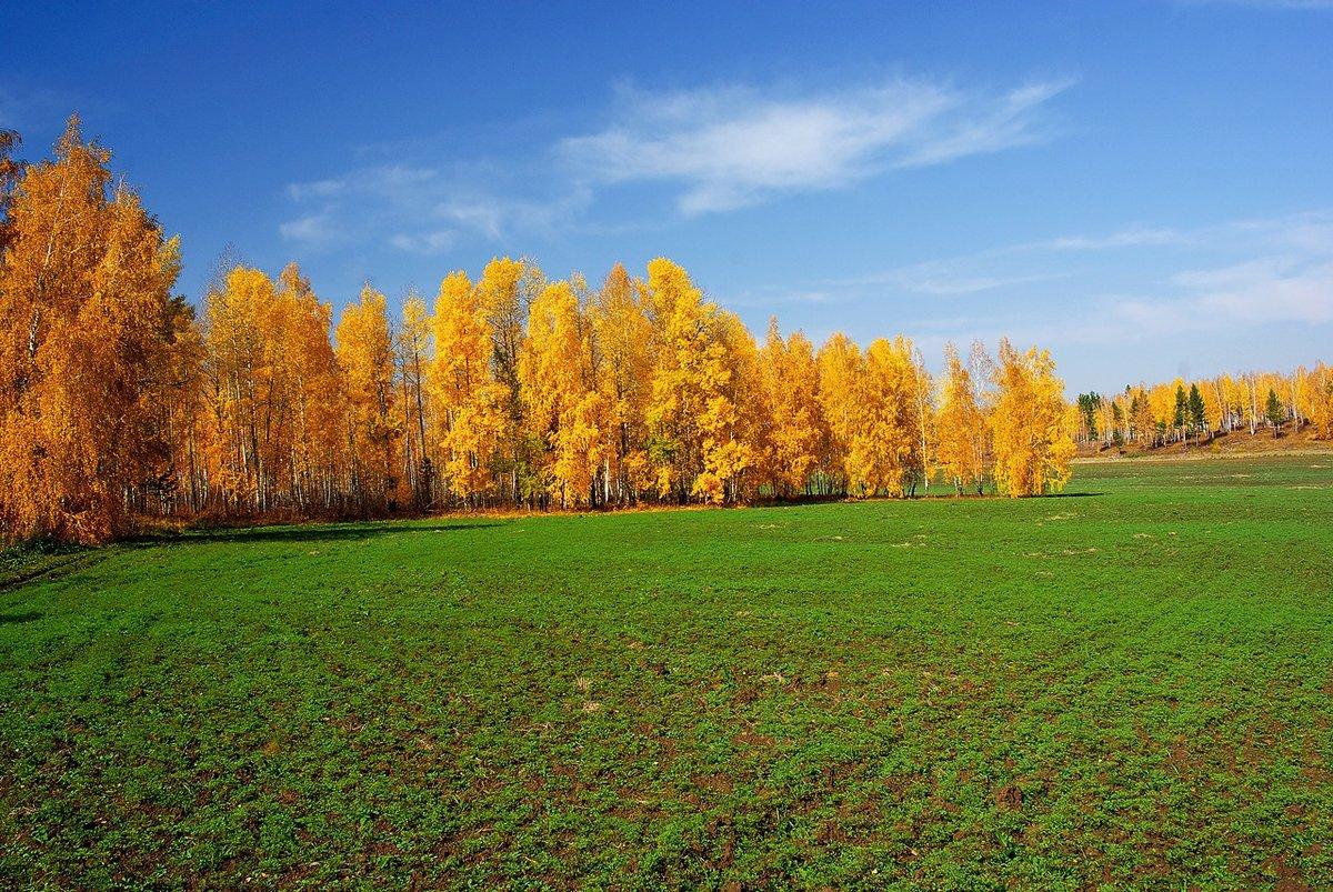 картинки осень поле крушения храма