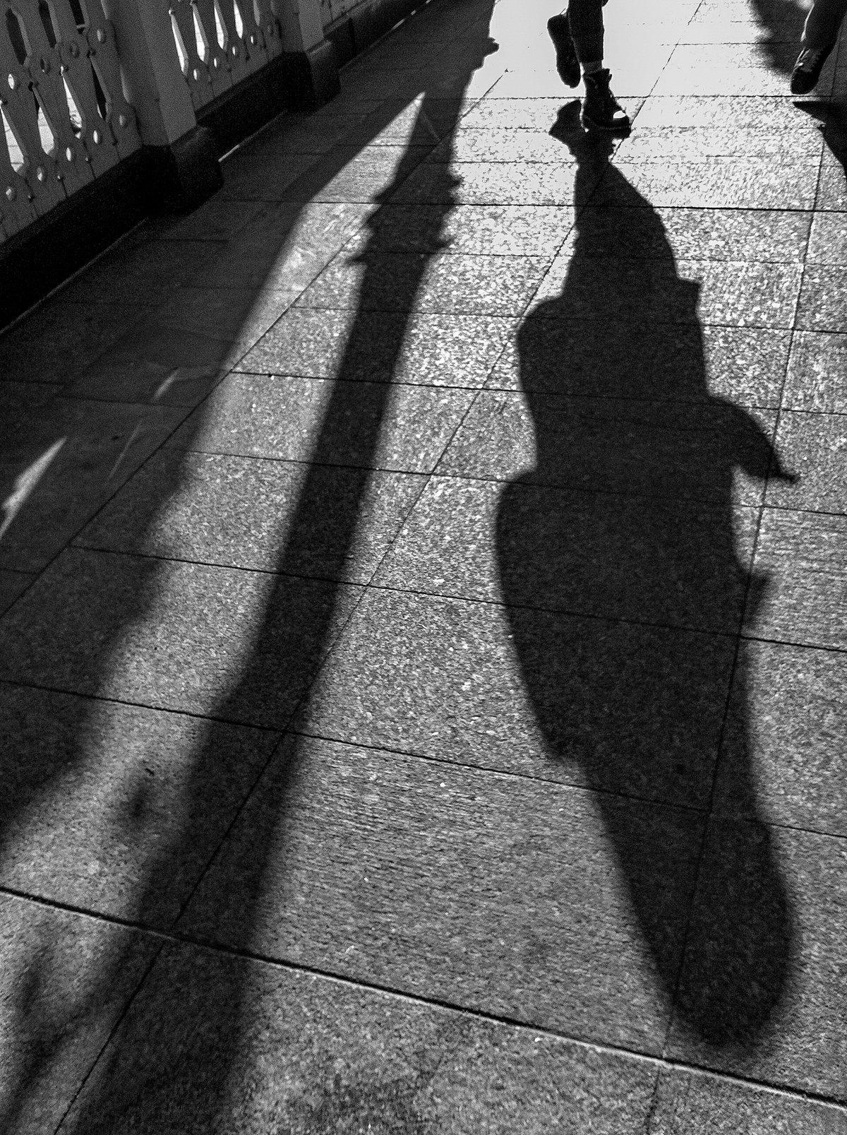 картинка свет и тень жизни усыновила пятерых