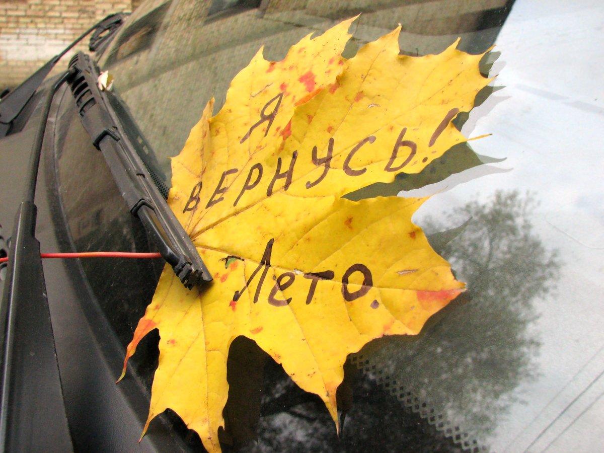 Прикольные картинки вот и осень пришла с надписями, мейбл смешные картинки