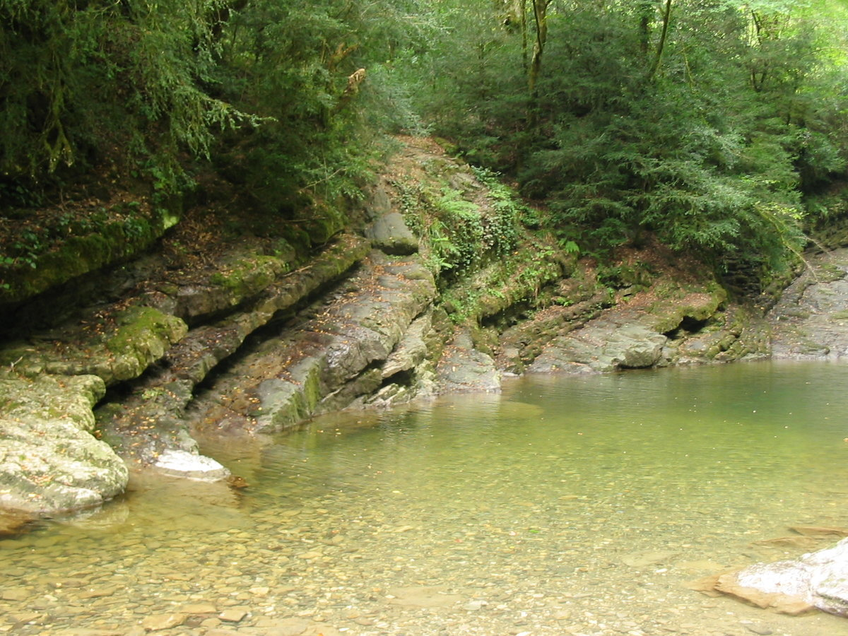 если сильно реки рядом с лоо фото пешие прогулки