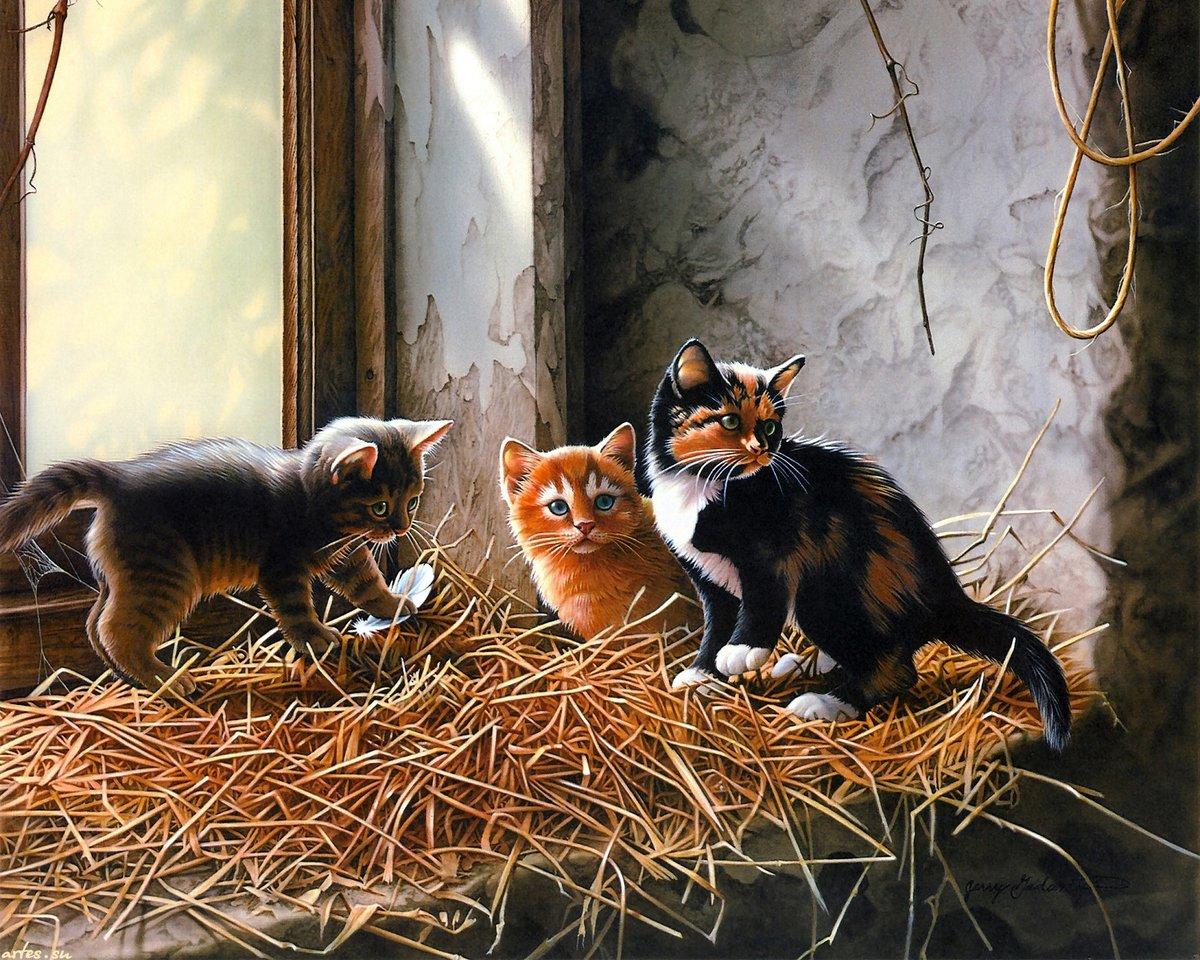 вот просто картинки для декупажа коты и кошки котята избегать