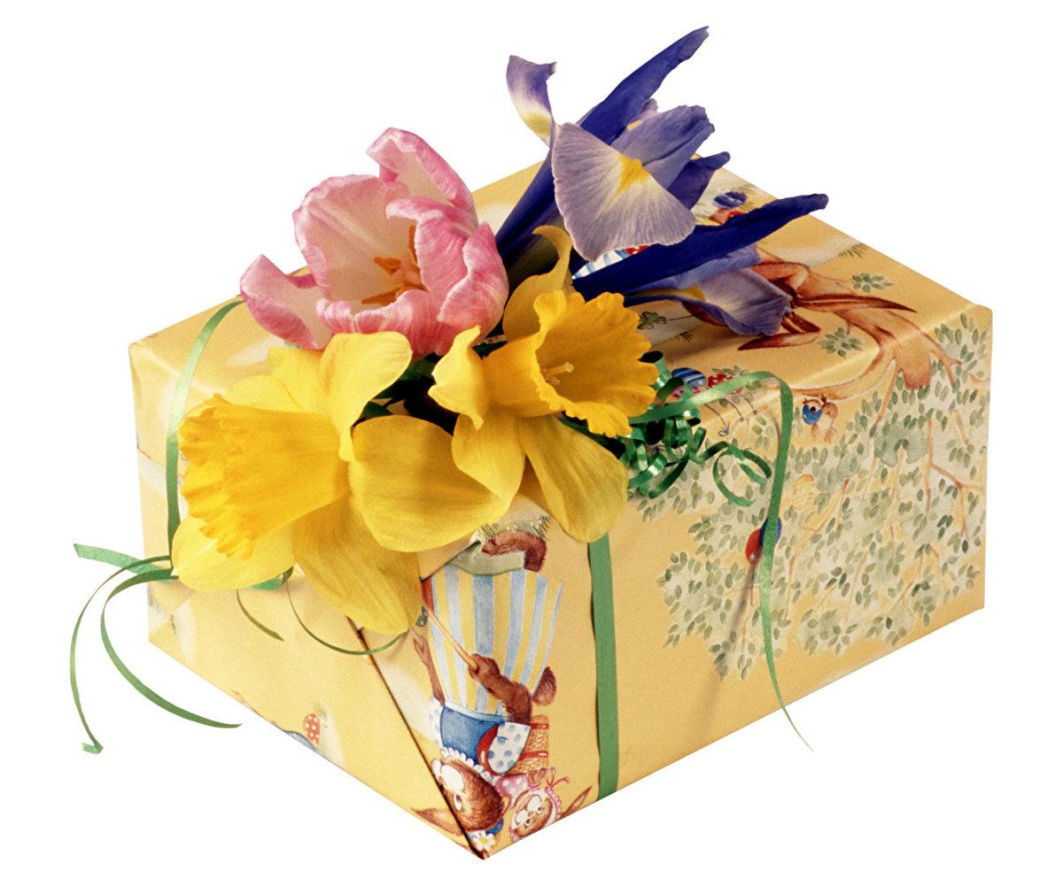 Поздравления днем, открытка подарочек