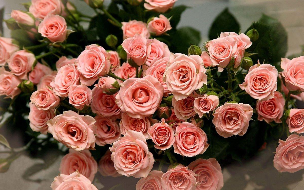 Фото открытки цветов