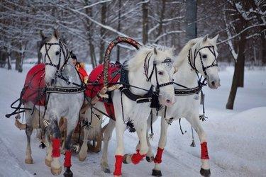 картинки тройка лошадей с бубенцами