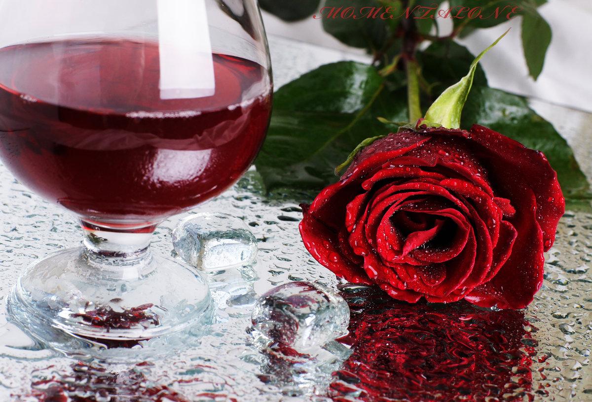 картинки бокал вина и роза модниц волнует