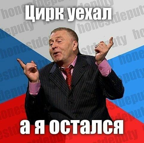 Жириновский картинка приколы