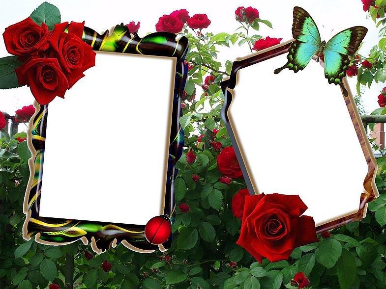 Рамочка на фото онлайн