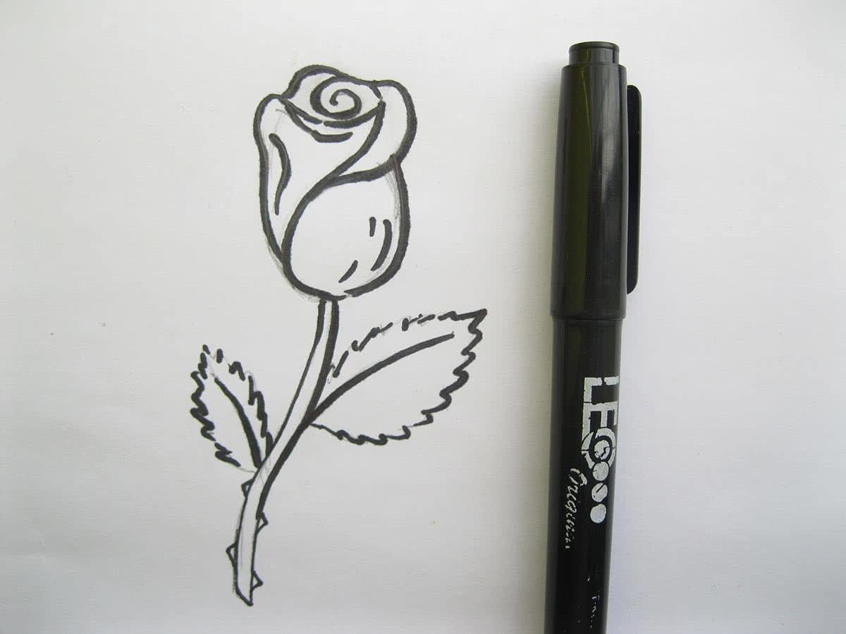 Рисовать поэтапно ручкой картинки