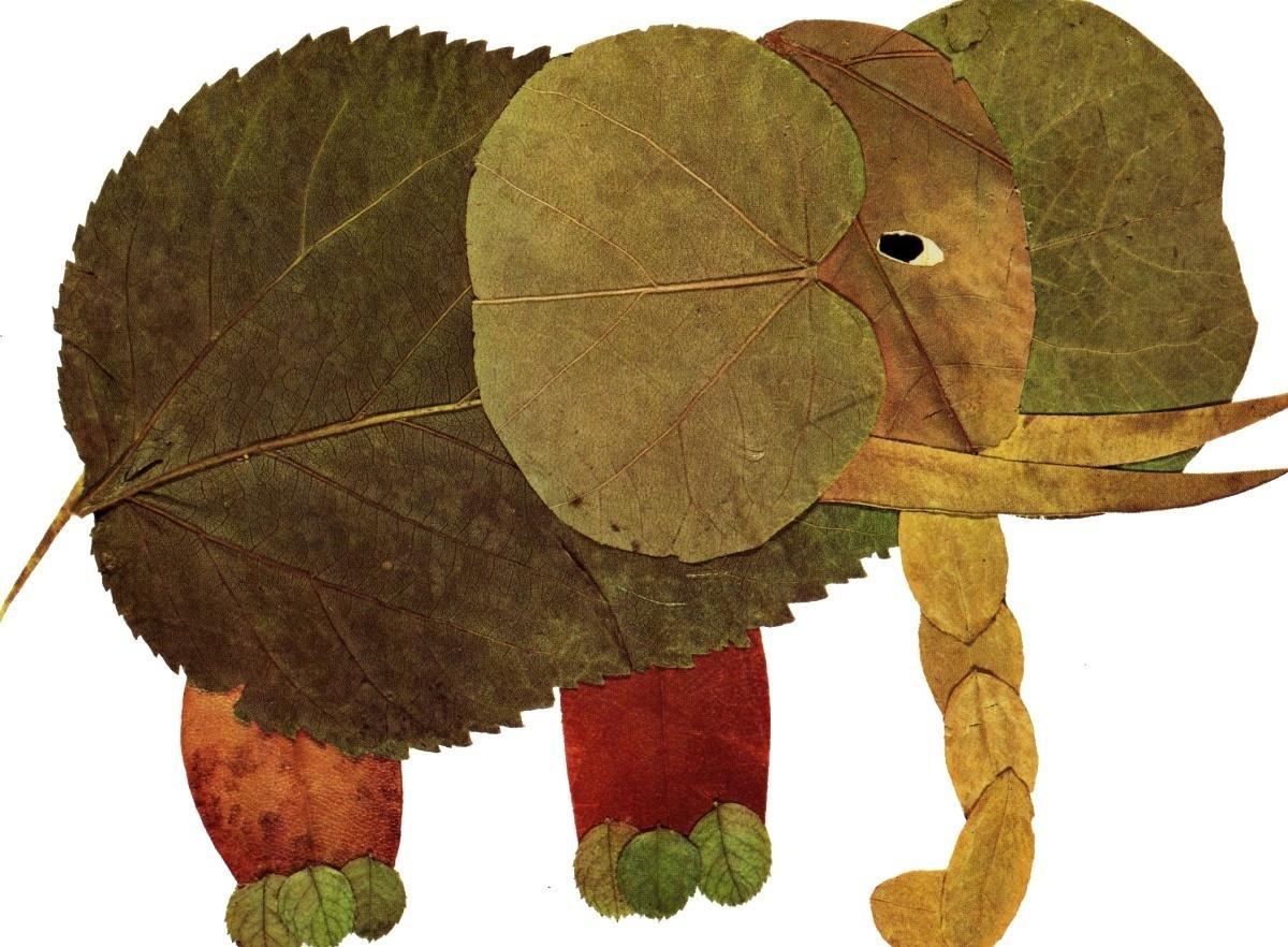 Ребенка лет, прикольные картинки из листьев