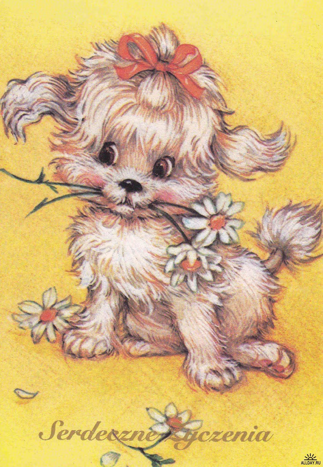 Картинки нарисованные открытки
