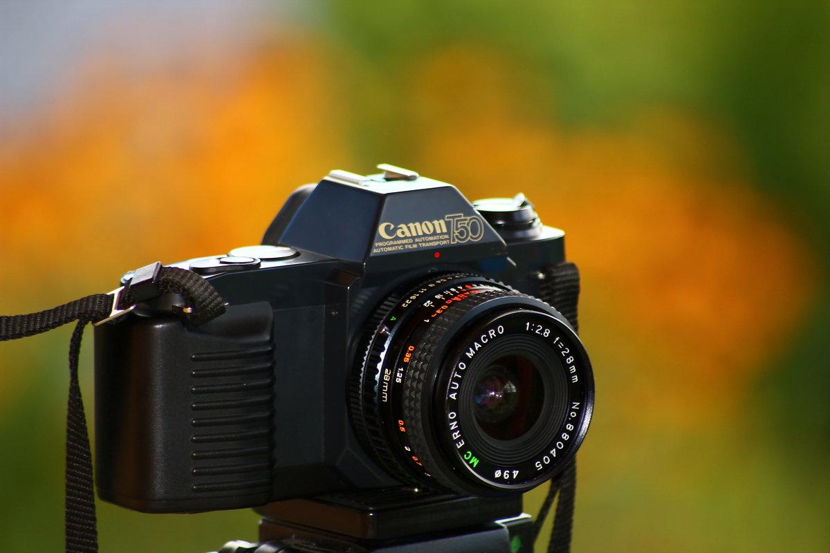 Качественная картинка от фотоаппаратов