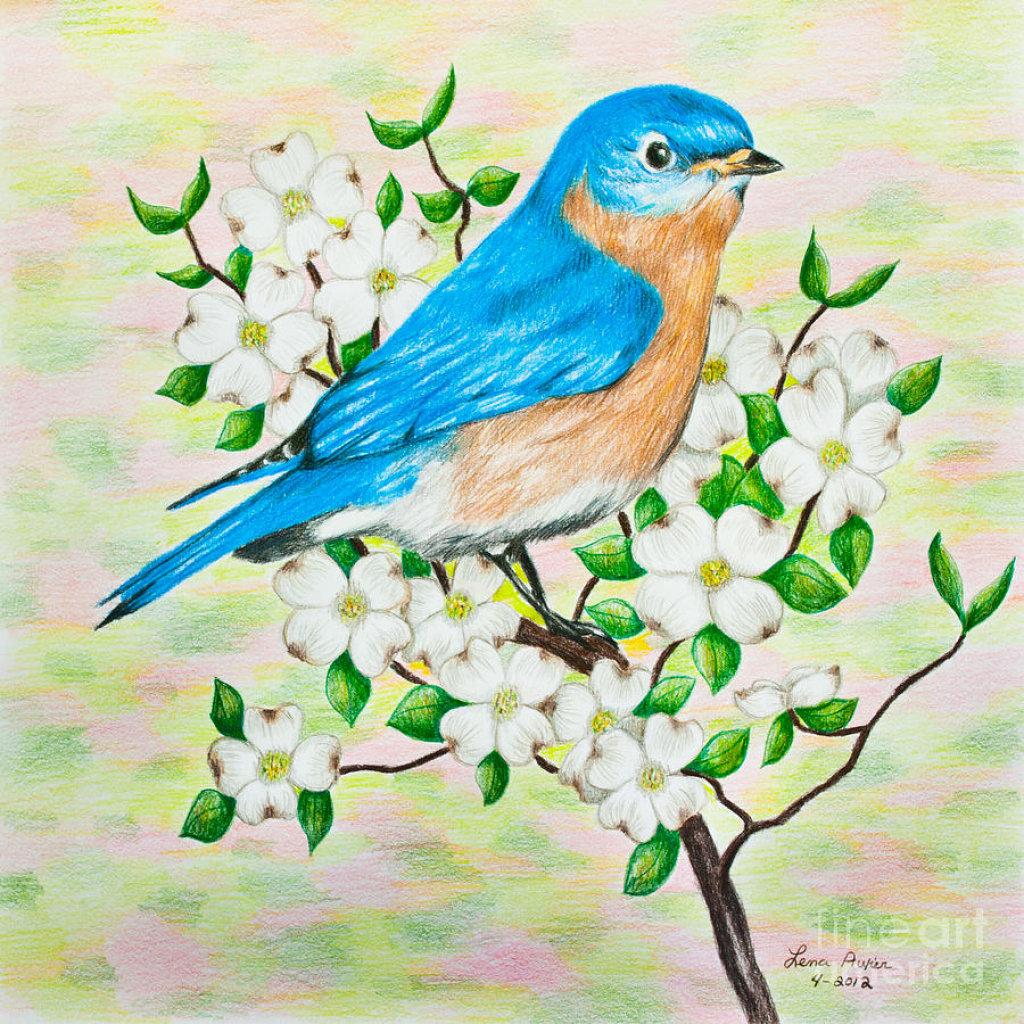 птица на ветке рисунок красками фанеры своими руками