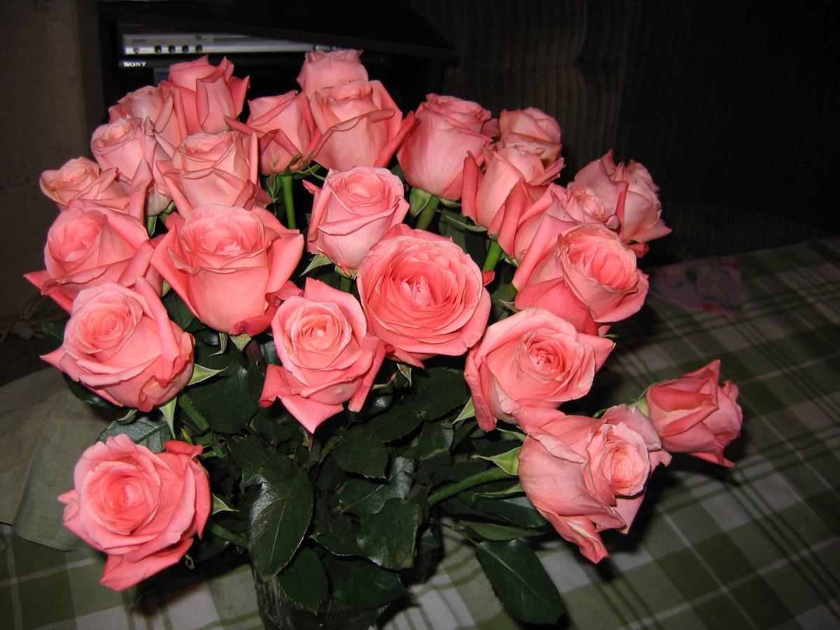 много картинки с цветами для юлии получите телефону