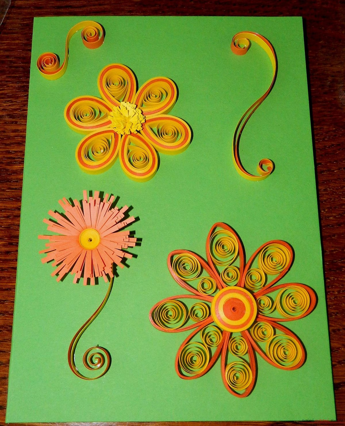 Февраля картинки, открытка цветы квиллинг