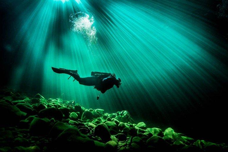 Подводные фотографии и картинки