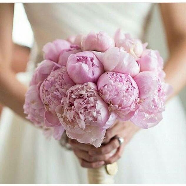 Недорогие свадебные букеты из пионов минск, цветов для предложения
