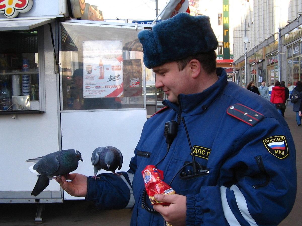 Днем, картинки прикольные про полицию