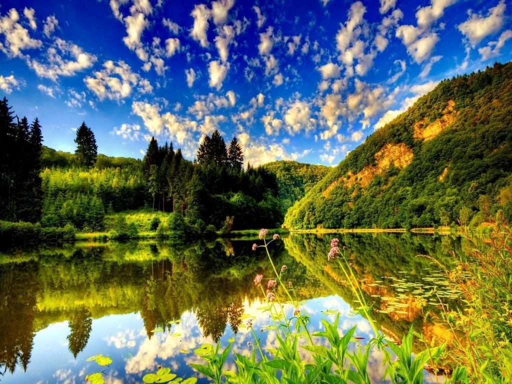 Картинка природы красивая лето