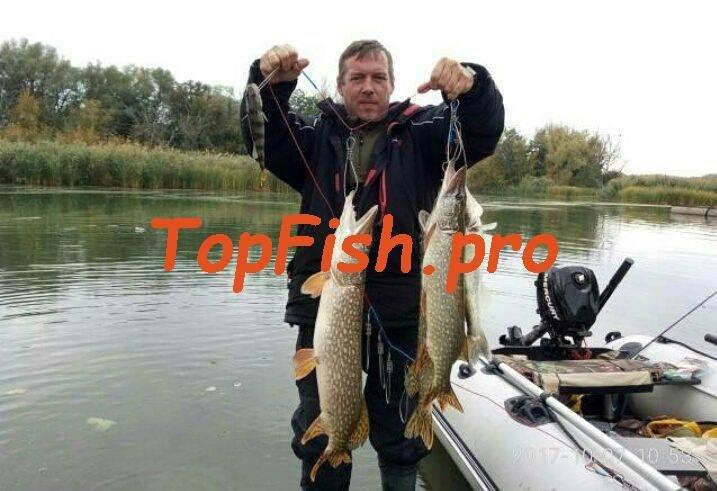 Активатор клева в Перми. http://topfish.pro/kupit-fishhungry-v ...