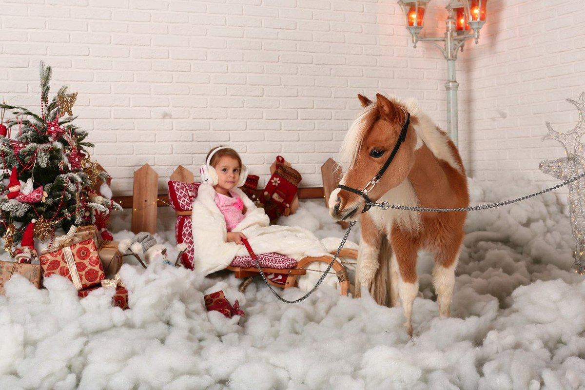 Картинки новый год лошадь, открытки добрым