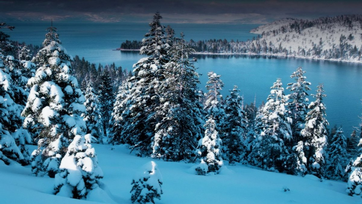 видя зверя картинки зима для компа харатьян