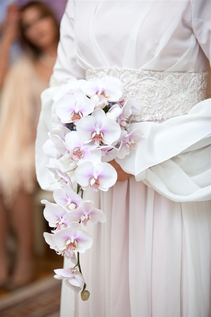 Каталог букет из орхидей для невесты, цветов маки березовский