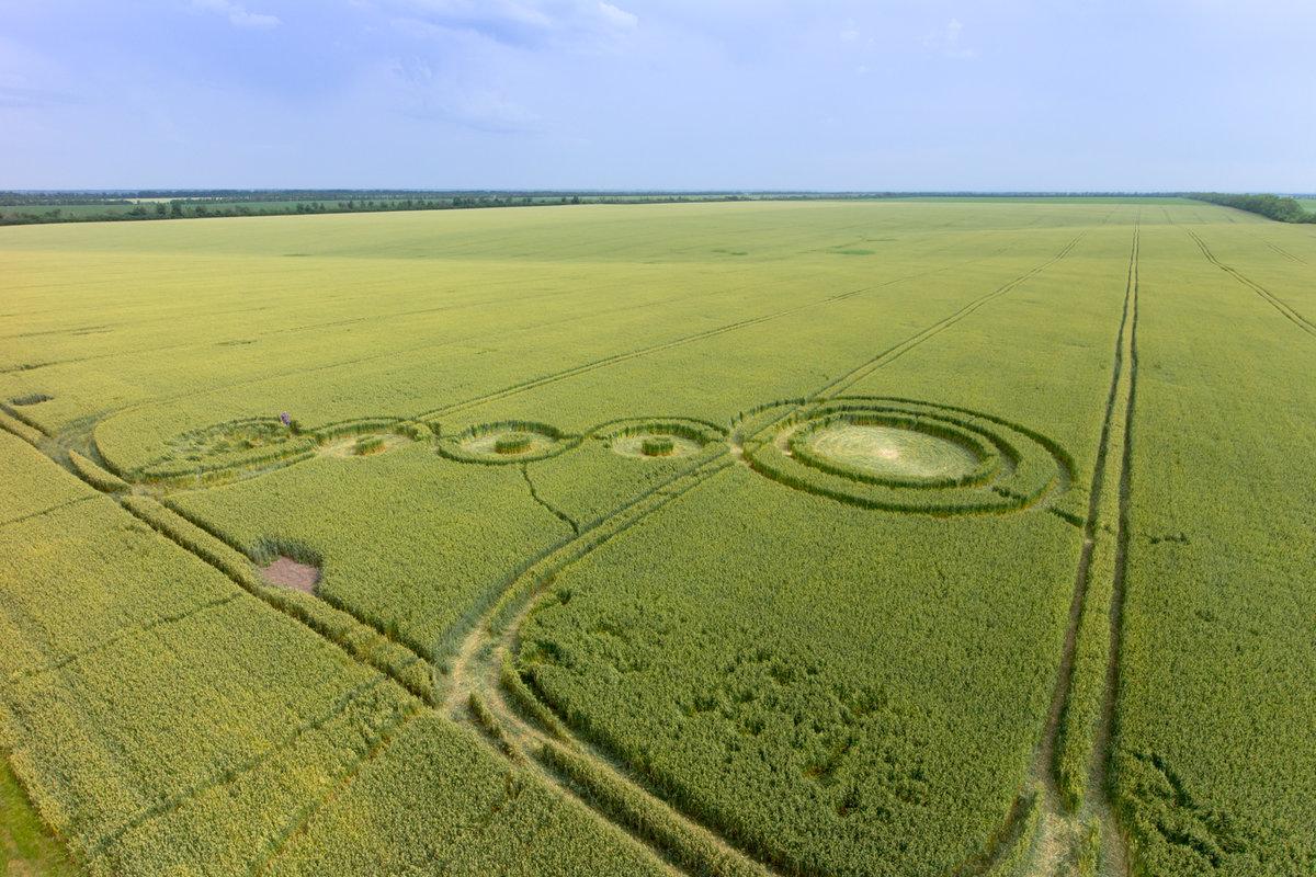 Нло круги на полях фото