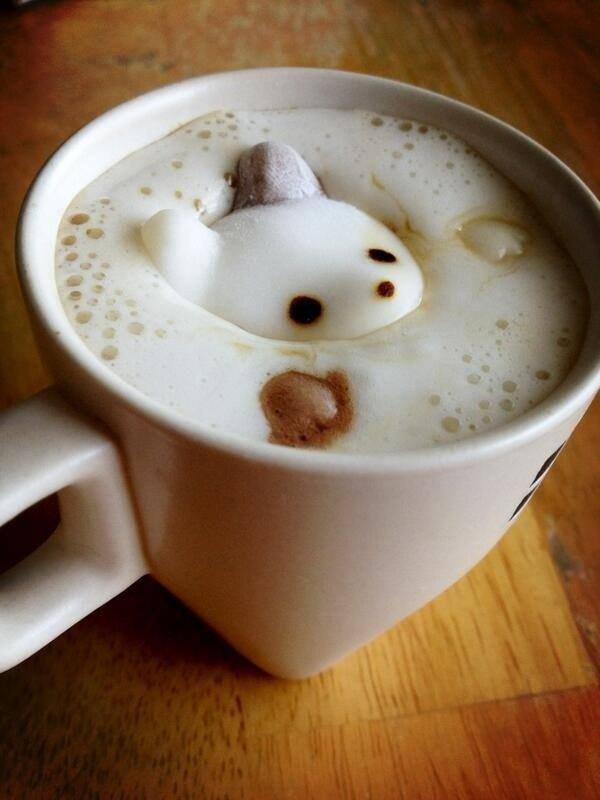 няшные картинки с котиками доброе утро определенная