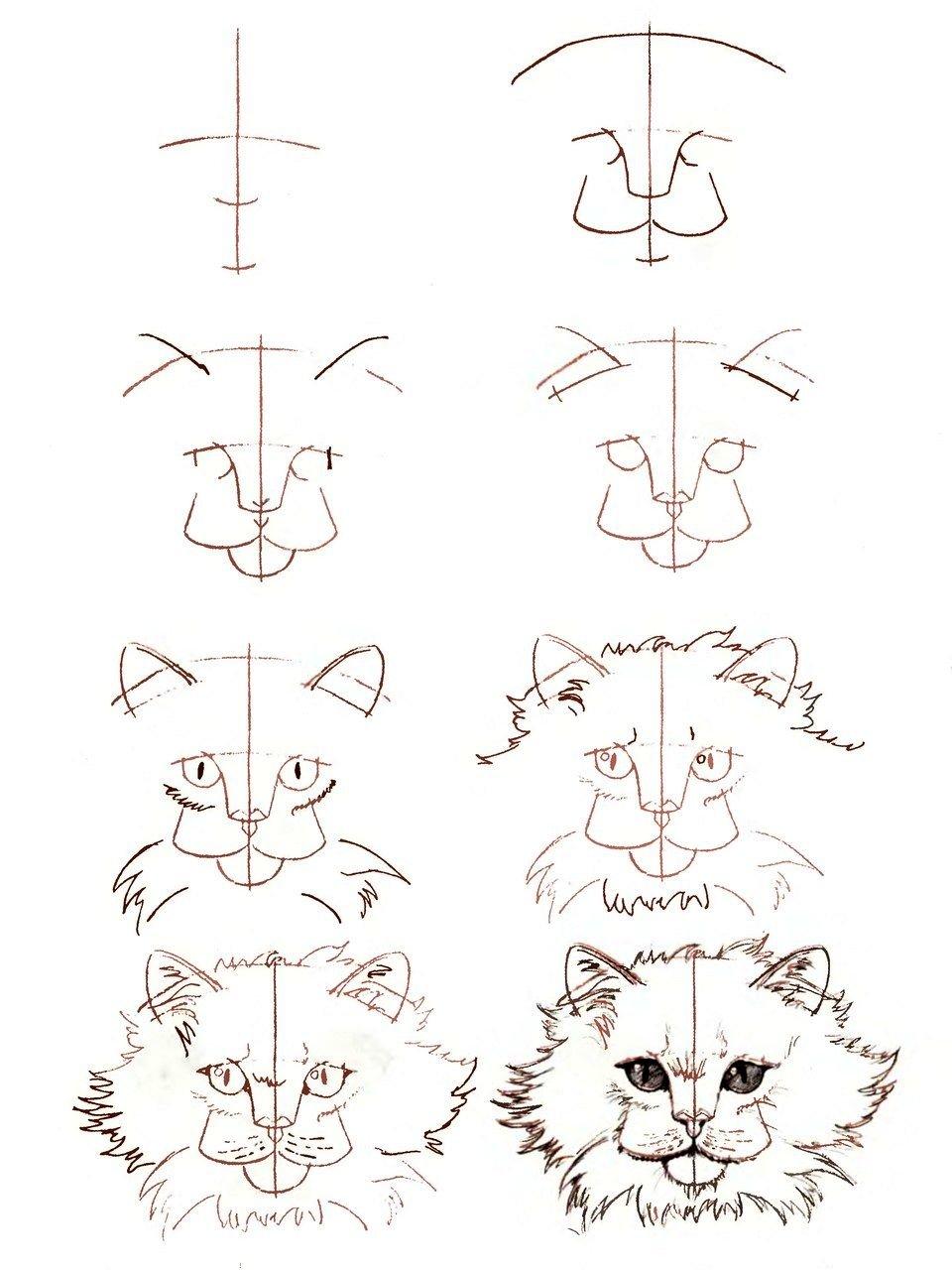 Картинки которые можно нарисовать карандашом для начинающих, картинки