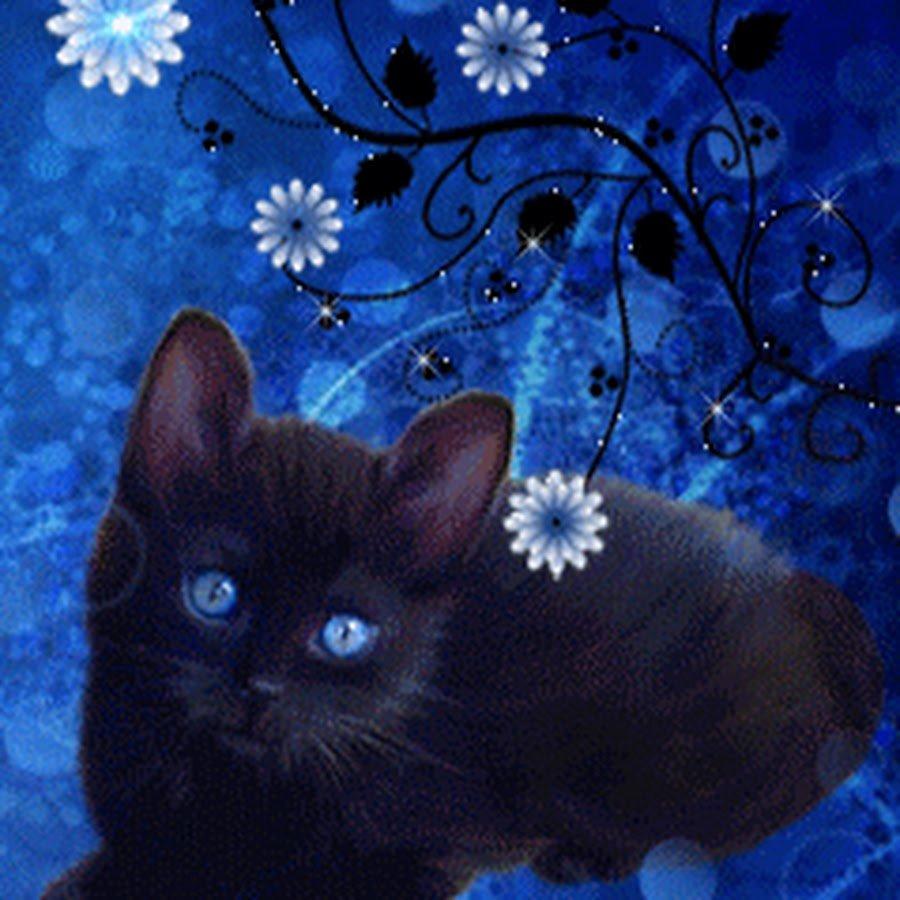 Котята гифы картинки