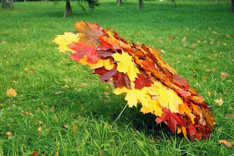 Прикольные картинки из листьев, марта