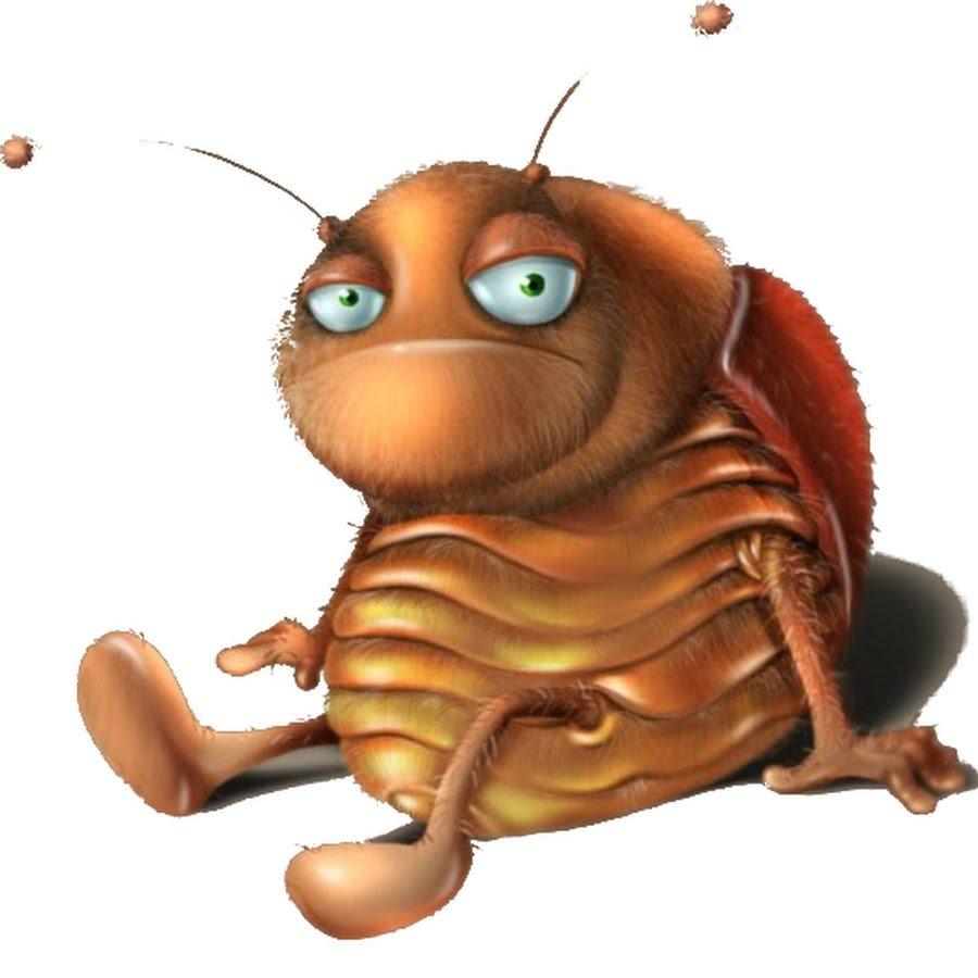 Прикольная, картинки прикольные тараканы
