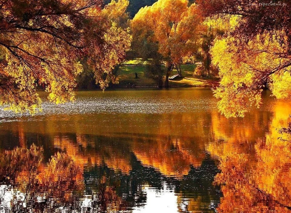 Картинки гиф осень