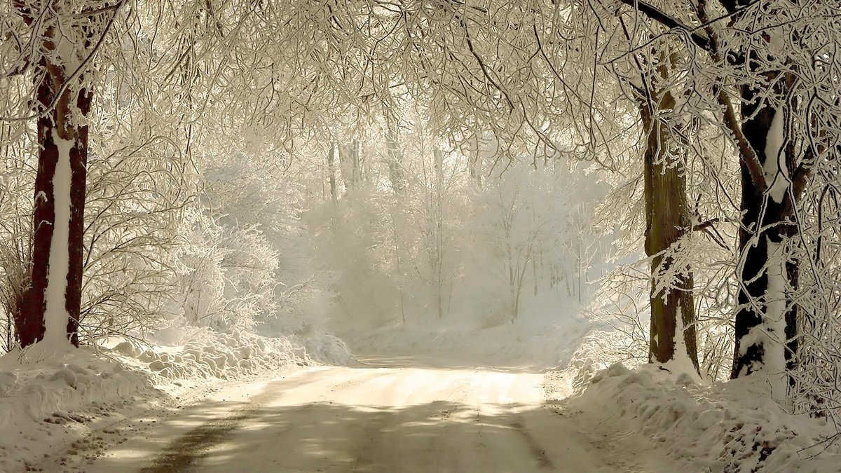 road-snow-trees-hoarfrost-gray-hair-landscape-Snow-White-winter-shadows-649985.jpg (1920×1080)
