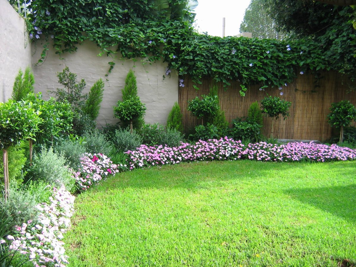 plants and flowers for landscaping - HD1200×900