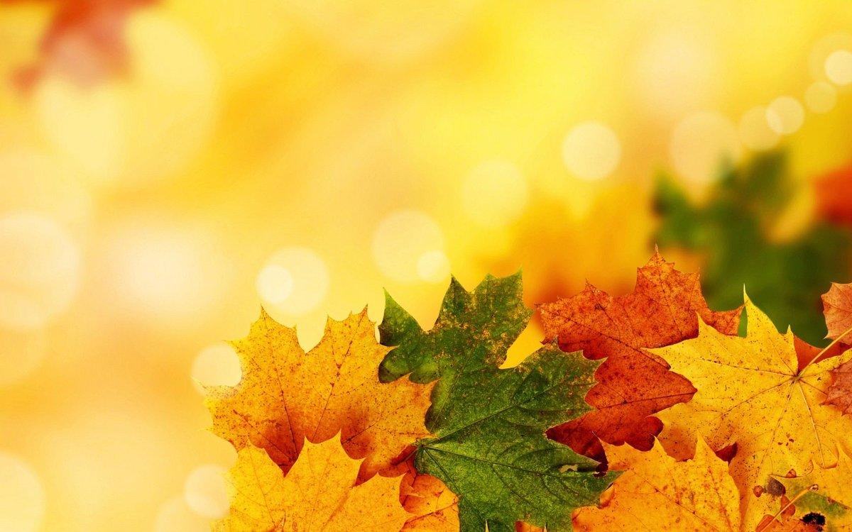Картинки, открытки осенние листья
