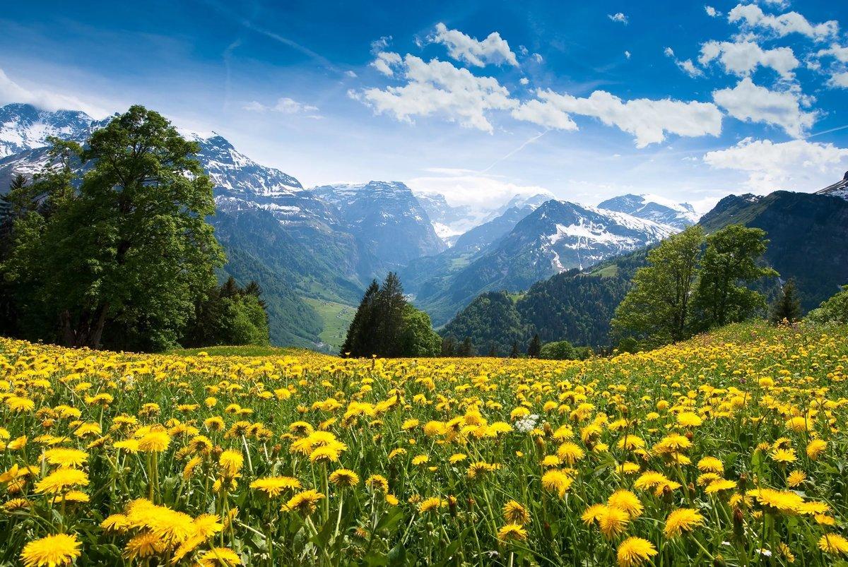 Красивые виды природы фото, дизайн стойки для
