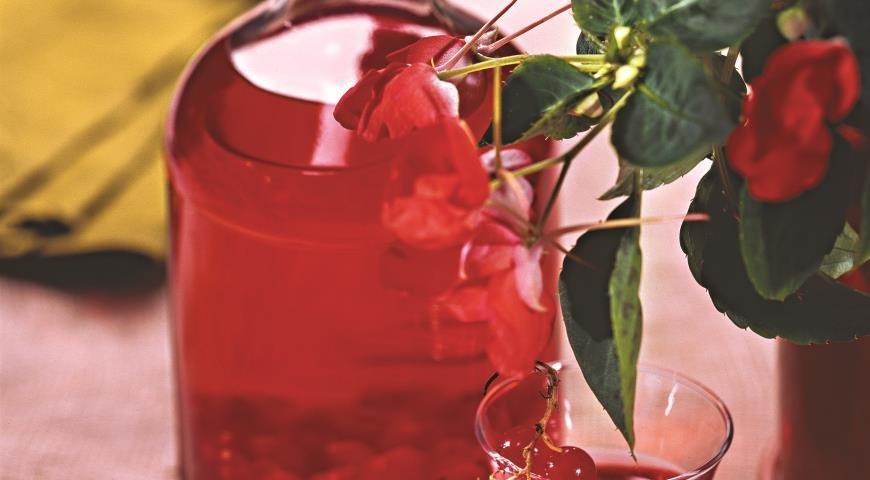 Домашнее вино из красной смородины пошаговый