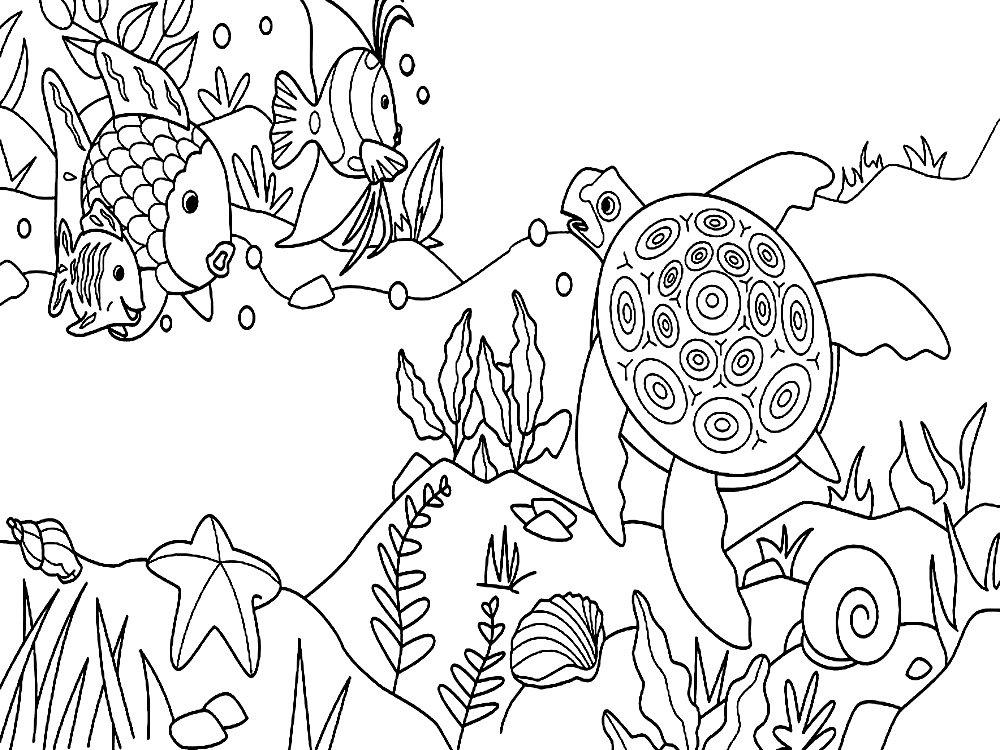Картинки подводного мира нарисованные карандашом, днем рождения