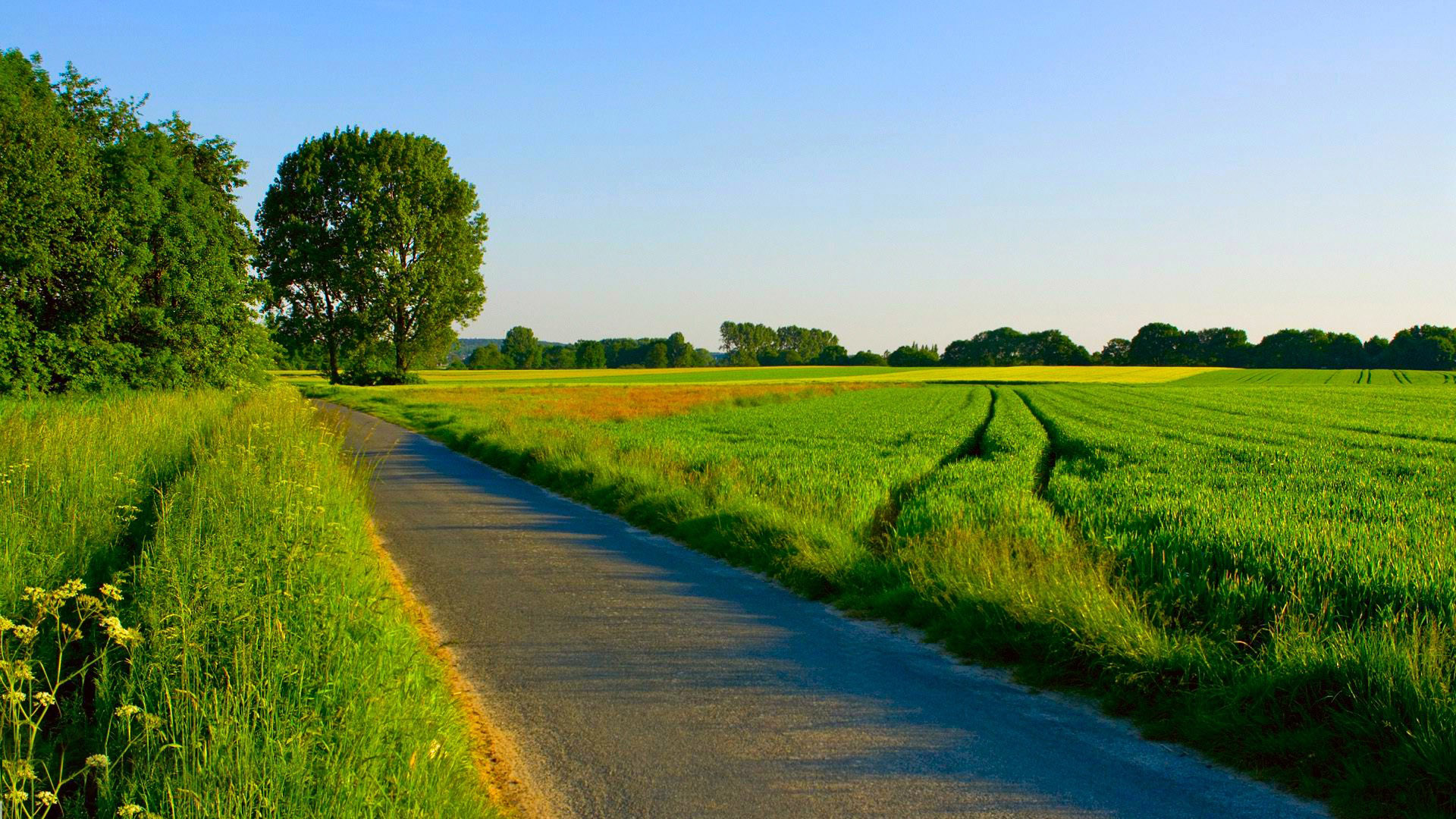 Summer Country Road Wallpaper 2 Card From User Stas In Yandex
