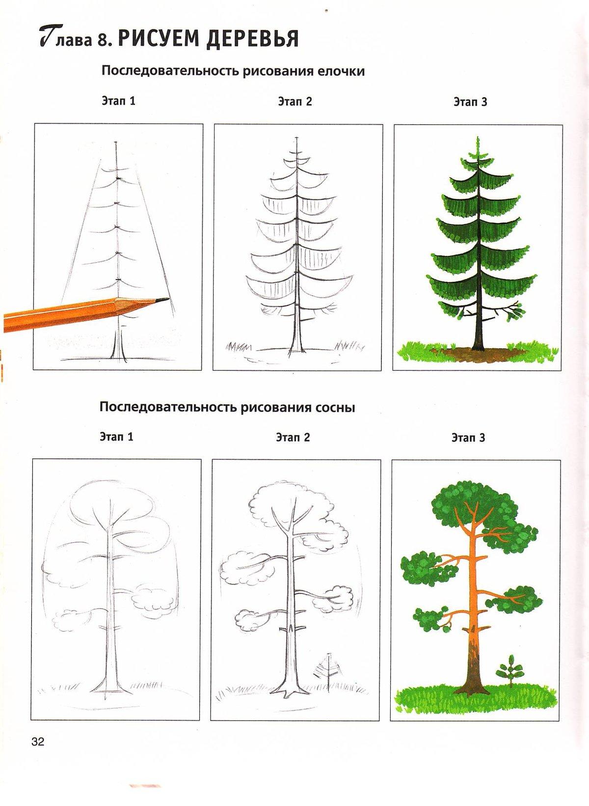 дерево картинки поэтапно для роли театре кино
