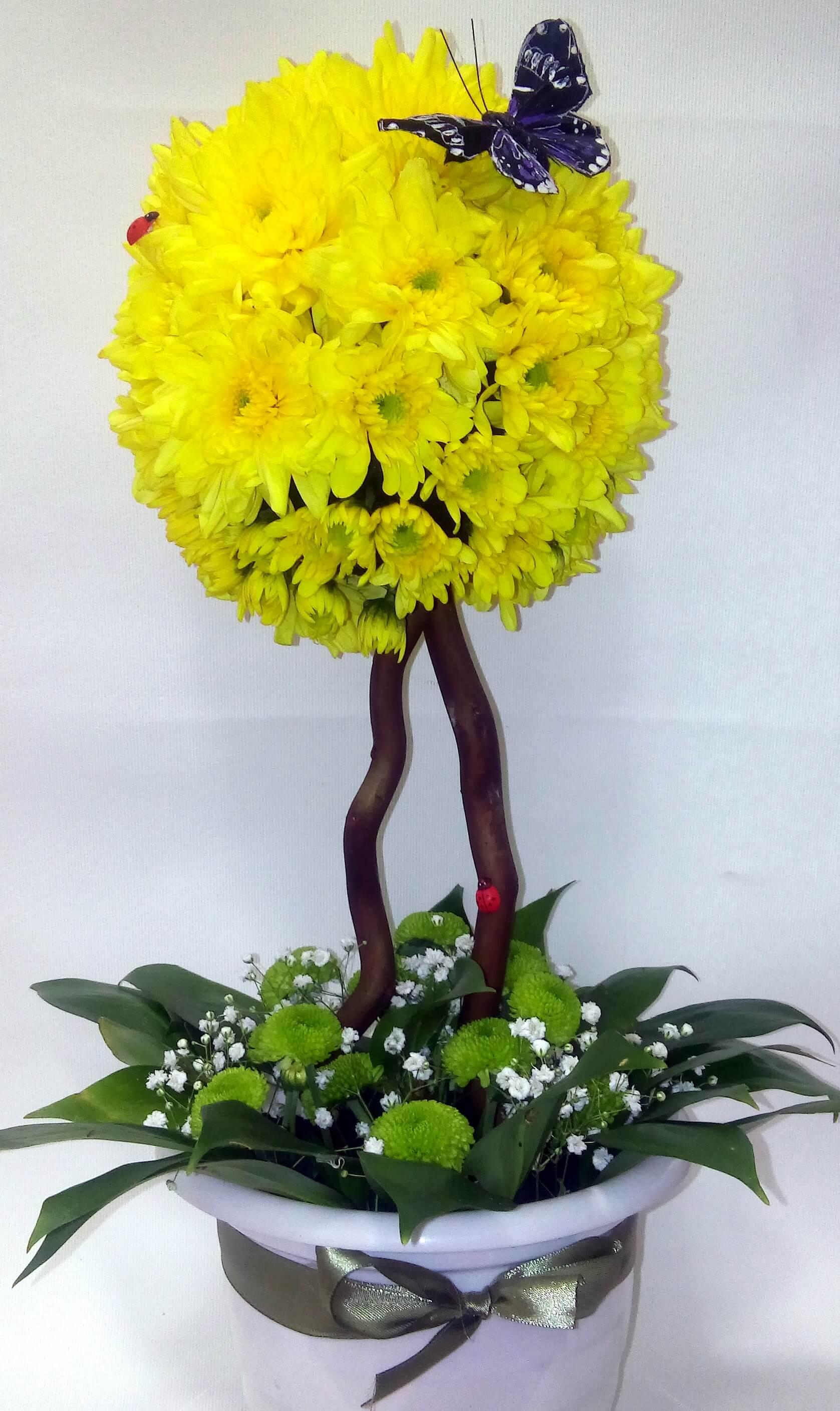 Топиарий из живых цветов своими руками фото 491