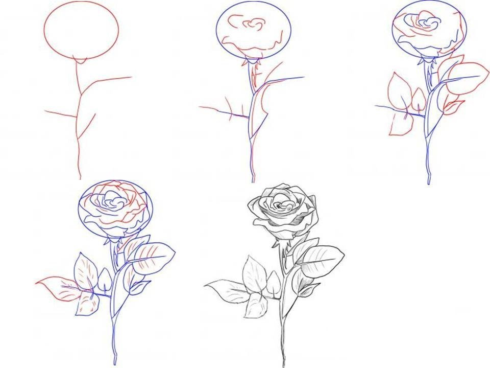 фото научиться рисовать картинку с цветами рада, сли будете