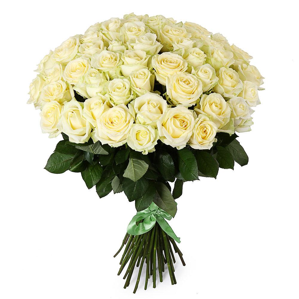Букеты цветов 51 роза недорого, цветы
