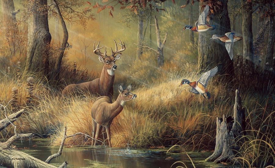 Картинки на тему охота высокого разрешения, днем