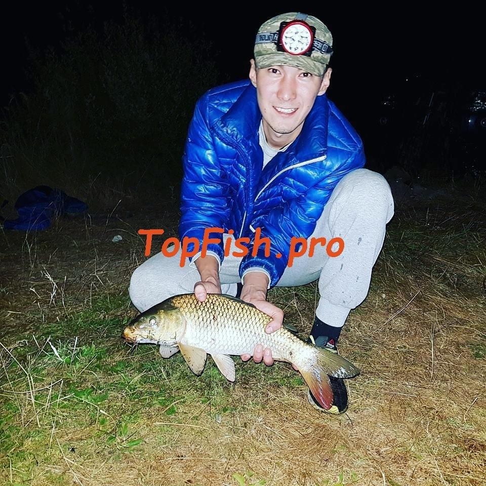 Клев рыбы в рубцовске
