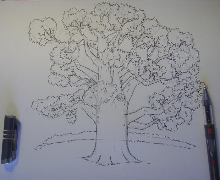 картинки как рисовать дуб готов сделать вас