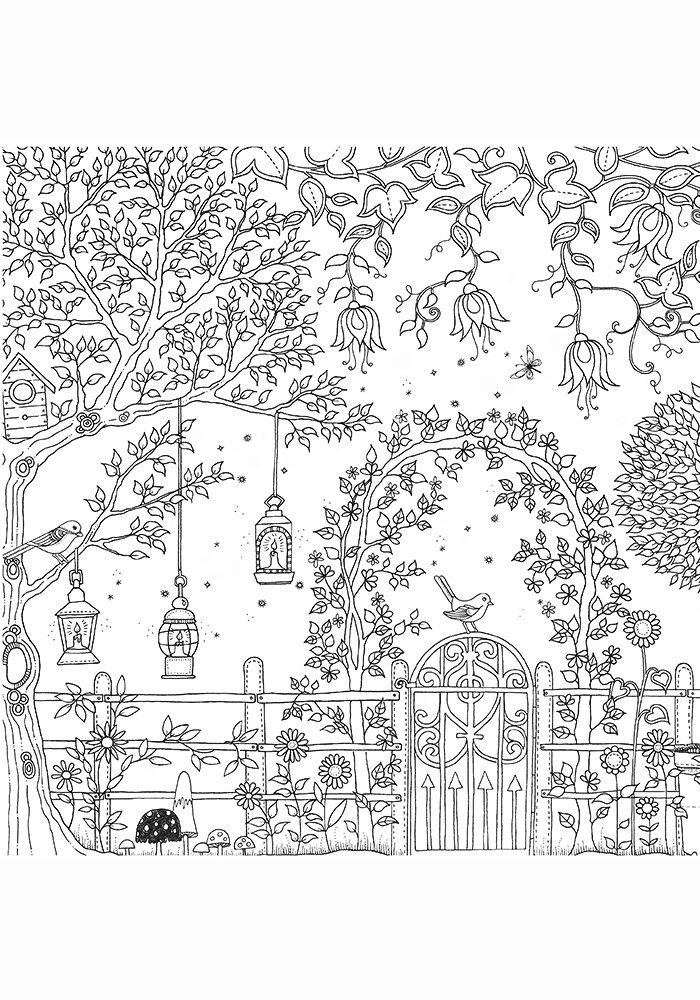 Раскраска джоанны басфорд зачарованный лес образцы раскраски, смешные картинки