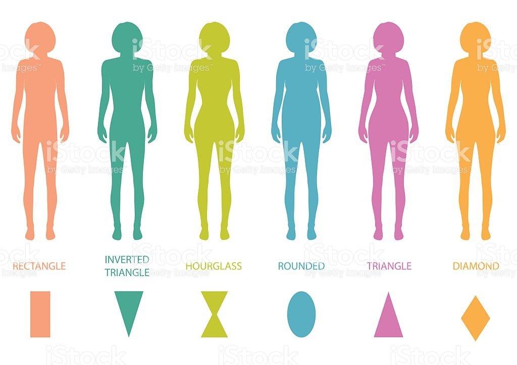 Female Body Types Anatomy Stock Vector Art 467603802 Istock Human